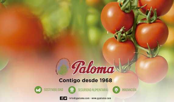 paloma_redes_contacto