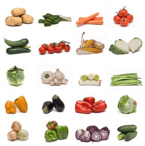 Cuál Es La Diferencia Entre Una Verdura Y Una Hortaliza Proexport