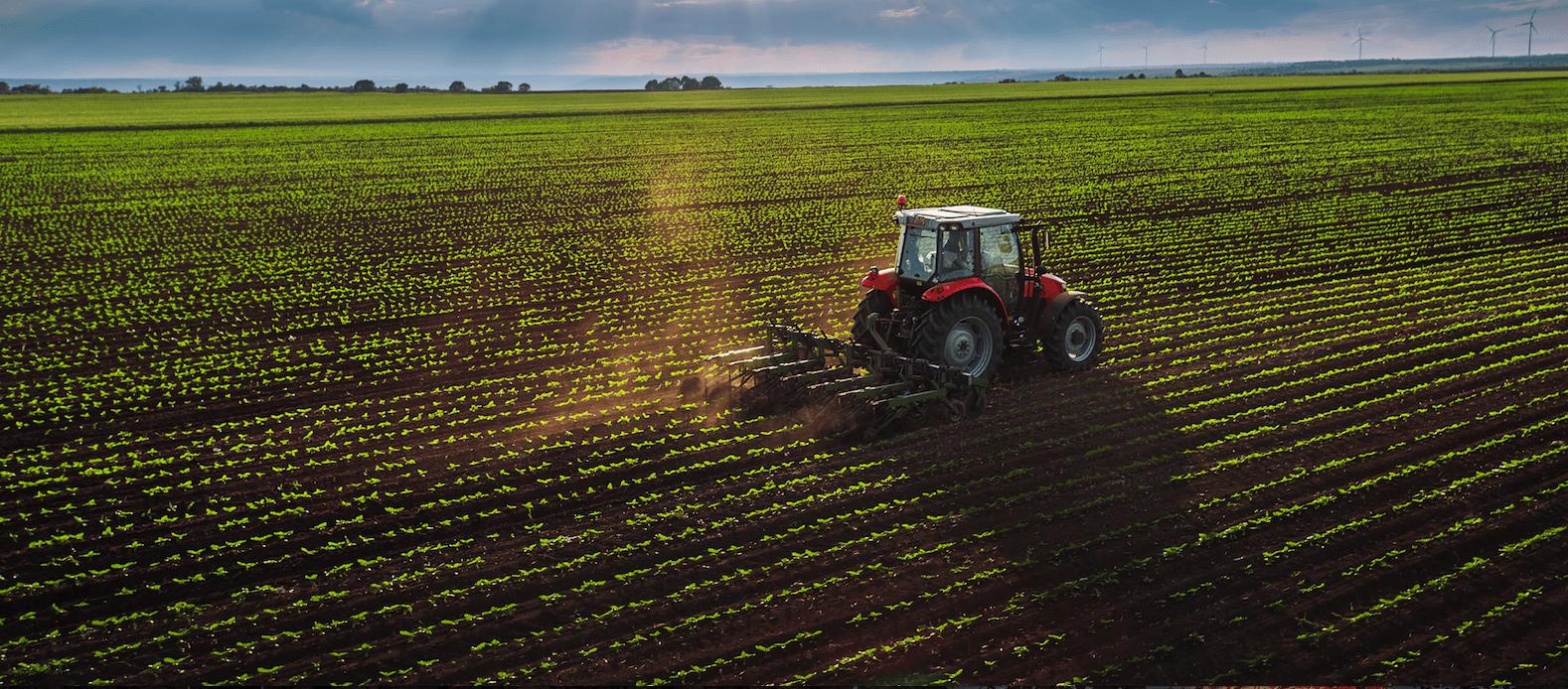 Agricultura: El arma contra el cambio climático