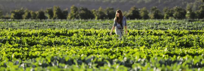 """Jornada: """"La Agricultura para luchar contra el cambio climático"""""""