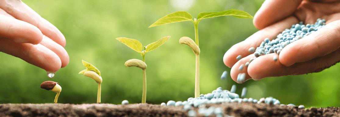 Nutrición vegetal sostenible