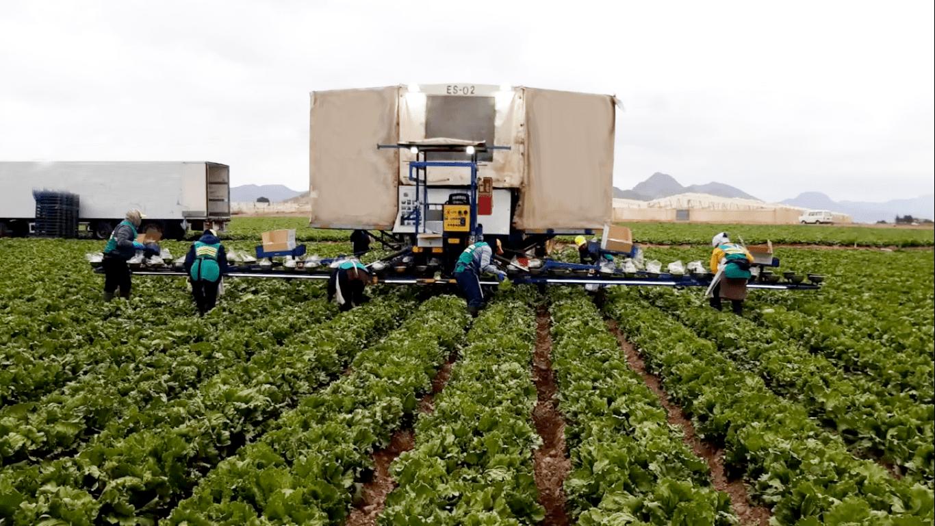 Proexport elabora un Protocolo de Actuación frente al coronavirus para el sector agrario