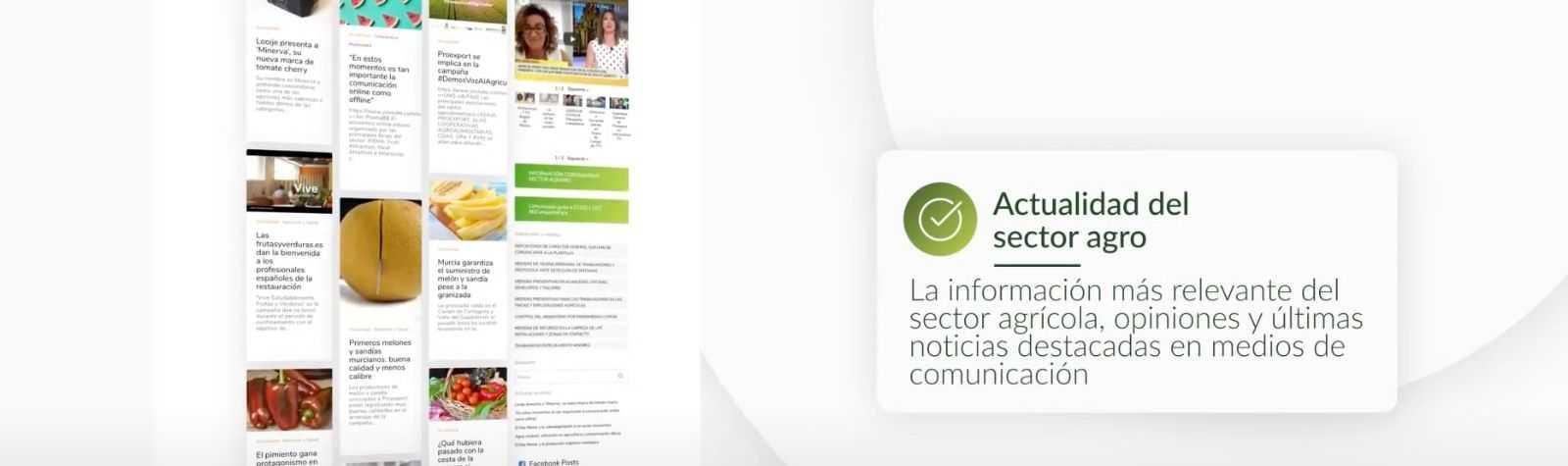 Proexport.es, web asociativa ganadora de los XII Premios Web Región de Murcia