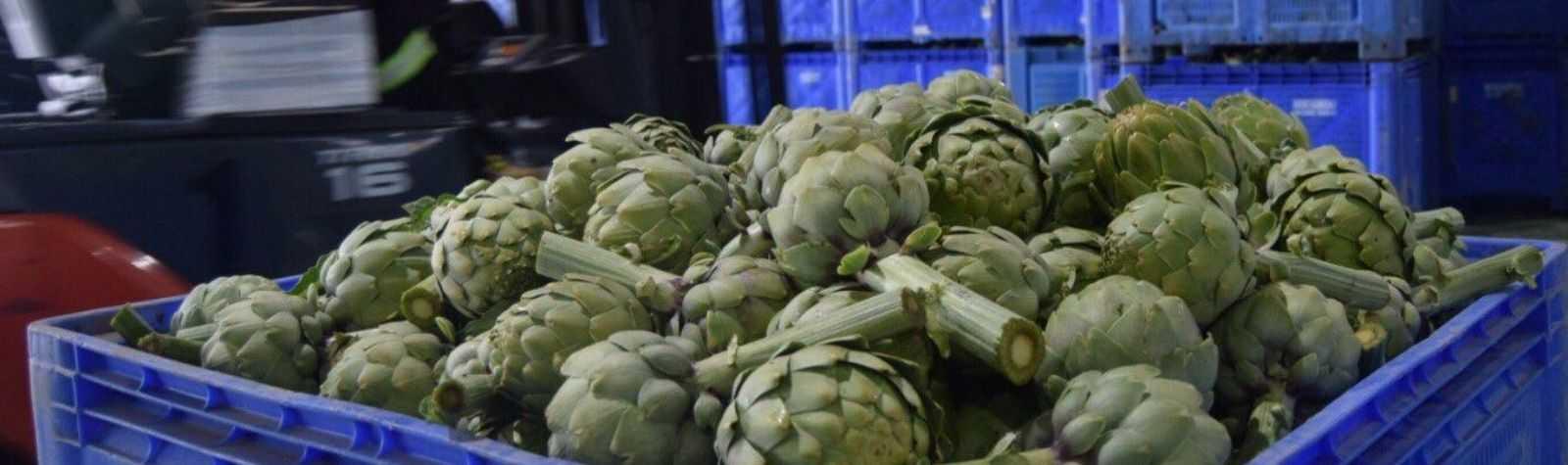 Las subastas de productos agrarios murcianos cumplen más de 40 años