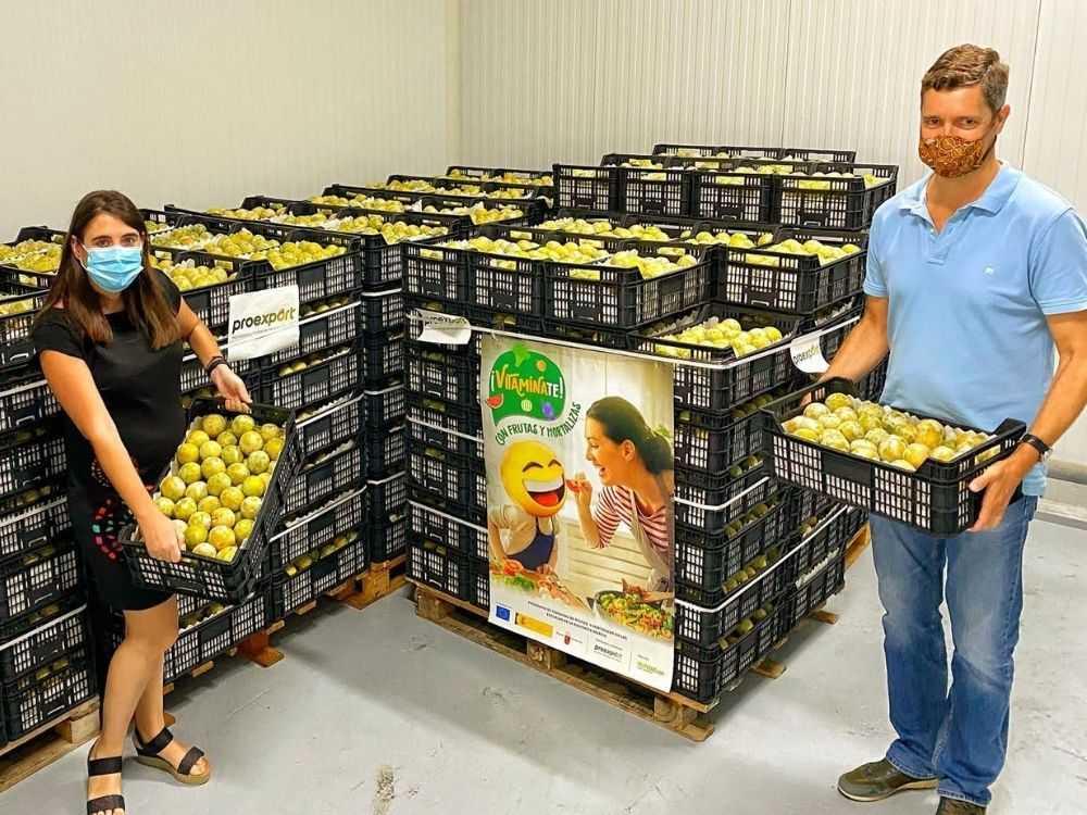 Proexport colabora con el Banco de Alimentos