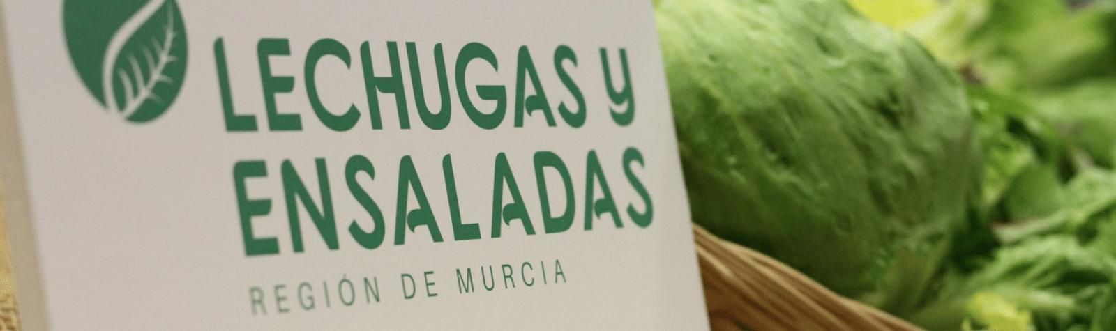 'Lechugas y Ensaladas de la Región de Murcia' promueve el consumo de hortalizas de hoja