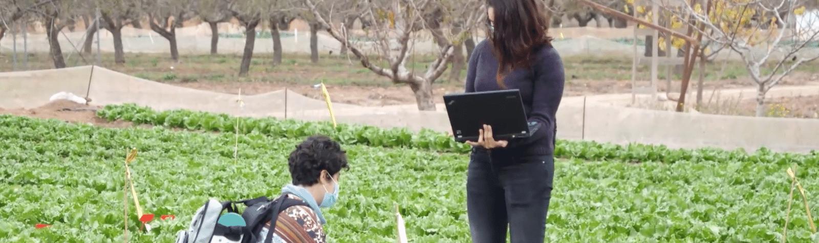 Nuevas técnicas para mejorar la eficiencia de la fertirrigación